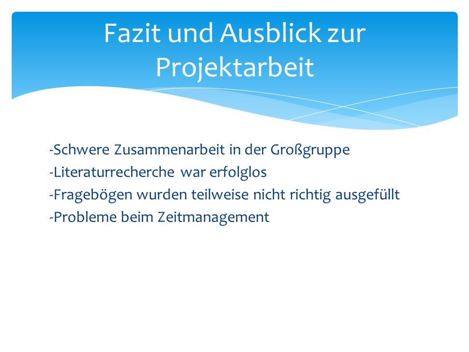 31072013 Projektarbeit Niels Stensen Kliniken